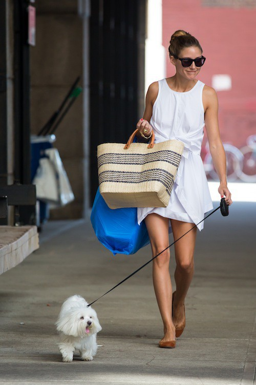 Photos : Olivia Palermo : toute mimi tout en blanc, assortie à son chien !