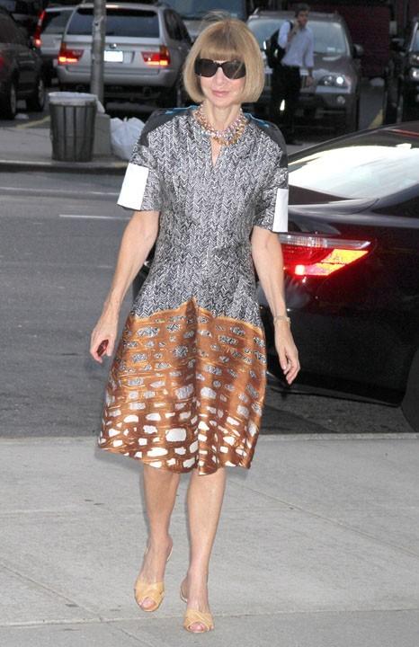 Anna Wintour lors de la première de The Whistleblower à New York, le 27 juillet 2011.
