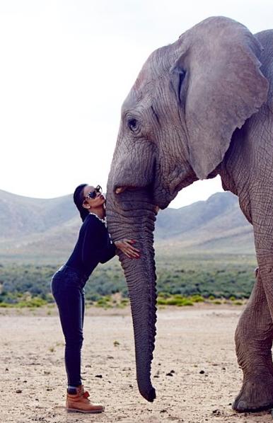 Riri se laisse attendrir par un éléphant !