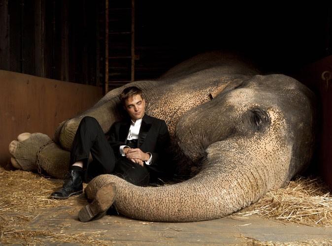 Photos : Robert Pattinson dans le film De l'eau pour les éléphants