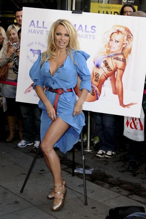 Pamela Anderson se met à nu pour la défense des animaux avec la PETA