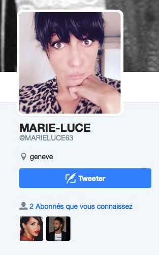 Le compte Twitter de Marie-Luce Benattia