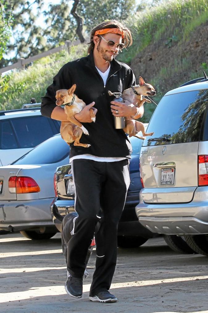 Ashton Kutcher :  Quelle vie de chien !