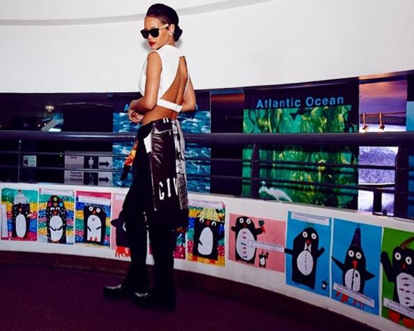 Rihanna à l'Aquarium de Cape Town