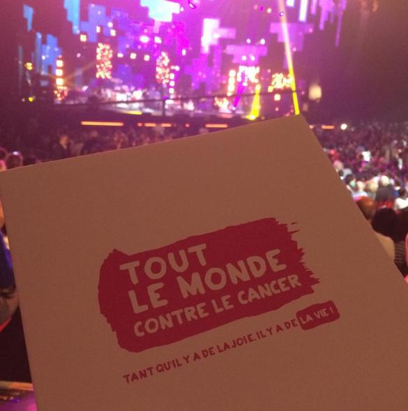 """Concert """"Tout le monde chante contre le cancer"""" au Zénith de Paris le 01 décembre 2015"""