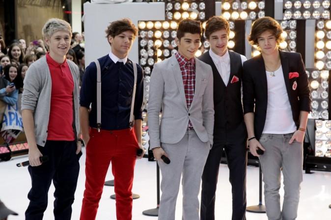 One Direction, la série télé !