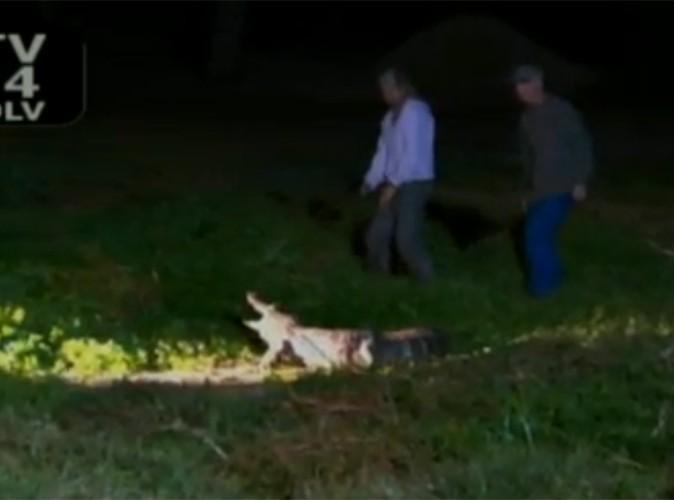 Scott Disick : le mec de Kourtney Kardashian assassine un alligator !