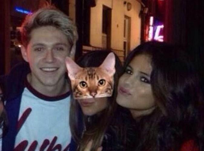 Selena Gomez : la starlette américaine a-t-elle fait craquer Niall Horan des One direction ?