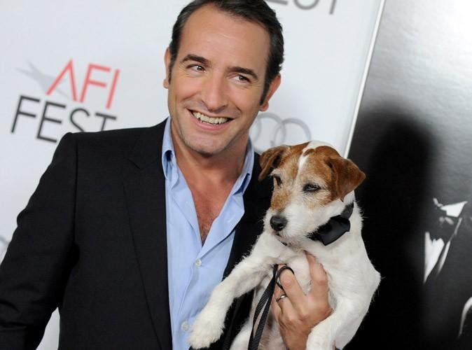 Uggie : le chien de The Artist nommé aux Golden Collar Awards !