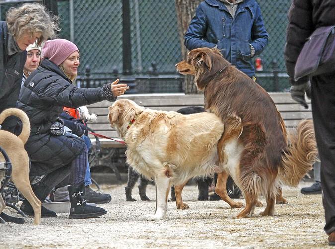 """La VDM people : """"Mon chien tire plus vite que son ombre !"""""""